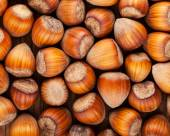 Background of dried whole hazel nuts close-up — Стоковое фото