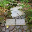 Stone Steps at Japanese Garden — Stock Photo #57494439