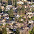 Residential Homes in North American Suburbs — Stok fotoğraf #66224365