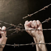 Barbed wire with hands — Stock Photo