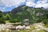 Poprad Lake in the High Tatras — Stock Photo