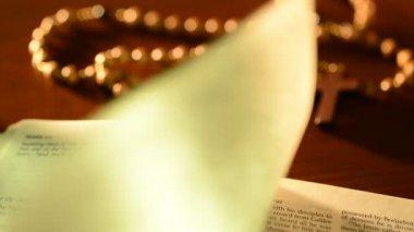 Look through of bible — Stock Video
