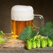 Still life with beer and hops — Stock Photo #56555085