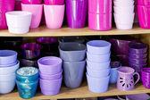 Flowerpots in a shelf in a market — Stock Photo