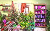 Interior of florist shop — Stock Photo