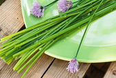 Chives on the plate — Stock Photo