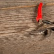 Used pruning shears — Stock Photo #66531259