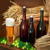 Still life with beer bottles — Stock Photo