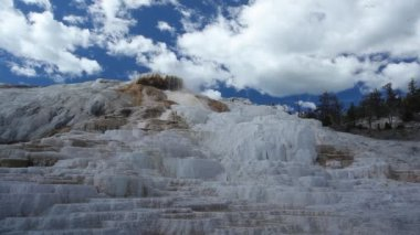 Geothermal pool in Mammoth Hot Springs, Yellowstone National Park — Stock Video