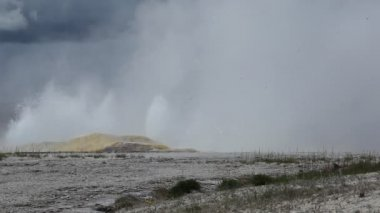 Clepsydra Geyser in Yellowstone National Park — Stock Video