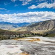 Постер, плакат: Mammoth Hot Springs Yellowstone National Park