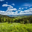 Beautiful landscape of meadow and forest in mountains. — Stock Photo #52865153