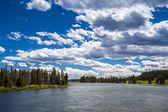 Paysage de rivière et forêt — Photo