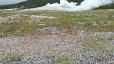 Old Faithful Geyser, Yellowstone National Park — Stock Video