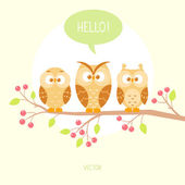 Owls three — Stock Vector