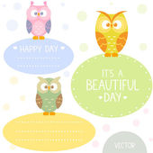 Owl frame set — Stock Vector