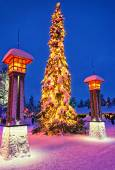 Christmas tree in Santa Claus village at Arctic Circle near Rova — Stock Photo