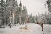 Sledge at snow valley in finnish Lapland in winter — Stock Photo