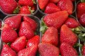 Rote erdbeere — Stockfoto