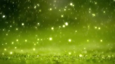 Nature background. Beautiful Blurred abstract bokeh with rain drop on grass. Sunlight. Sunflare. Slow motion — Stock Video
