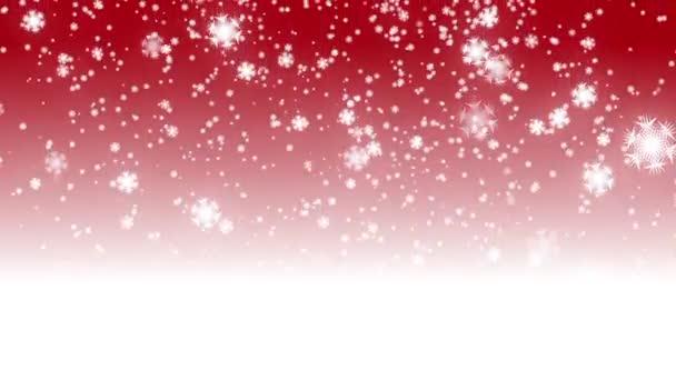Fond de noël rouge boucle numérique avec blanc vacances tombant bokeh et étoiles neige noël — Vidéo