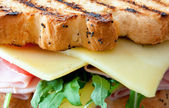 Grilled sandwich with cheese — Stock fotografie