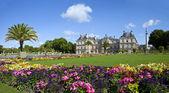 在巴黎的卢森堡公园卢森堡宫 — 图库照片