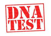 DNA TEST — Stock Photo