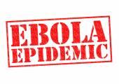 EBOLA EPIDEMIC — Stock Photo