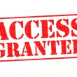 ACCESS GRANTED — Stock Photo #53332323
