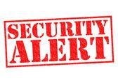 SECURITY ALERT — Stock Photo