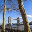 View of Tower Bridge from the Thames Path in London — Stock Photo #66408827