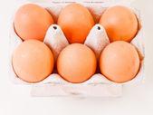 Retro look Eggs in carton box — Stock fotografie