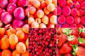 Retro look Fruit collage — 图库照片