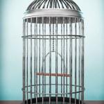 Old Style Photo. Metal Bird Cage — Stock Photo #76494053