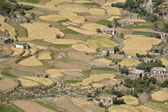 Fields in valley of Ladakh, India — Stock Photo