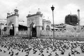 Hazratbal Mosque in Srinagar — Stock Photo