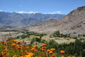 Ladakh Valley, India — Stock Photo