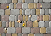 Poplar leaves on the tile pavement — Stock Photo
