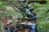 Close-up of a stream in the mountain slope — Stock Photo