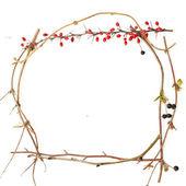Twig frame — Stock Photo
