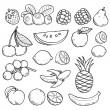 Black and white fruits and berries — Stock Vector #51974387
