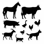 Farm animals vector set — Stock Vector