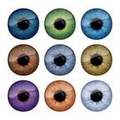 Set of human eyes iris — Vector de stock
