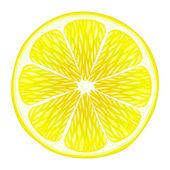 Lemon slice — Stock Vector