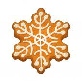Decorated snowflake. Gingerbread cookie. — Stockvektor