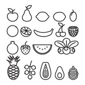 Fruits and berries in line art style. — Stock Vector