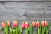 Fresh tulips arranged on old wooden backgroun — 图库照片