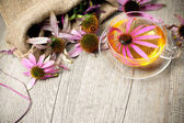 Cup of echinacea  tea on wooden table — Stock Photo