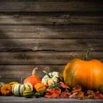 Thanksgiving — Foto Stock #54755279